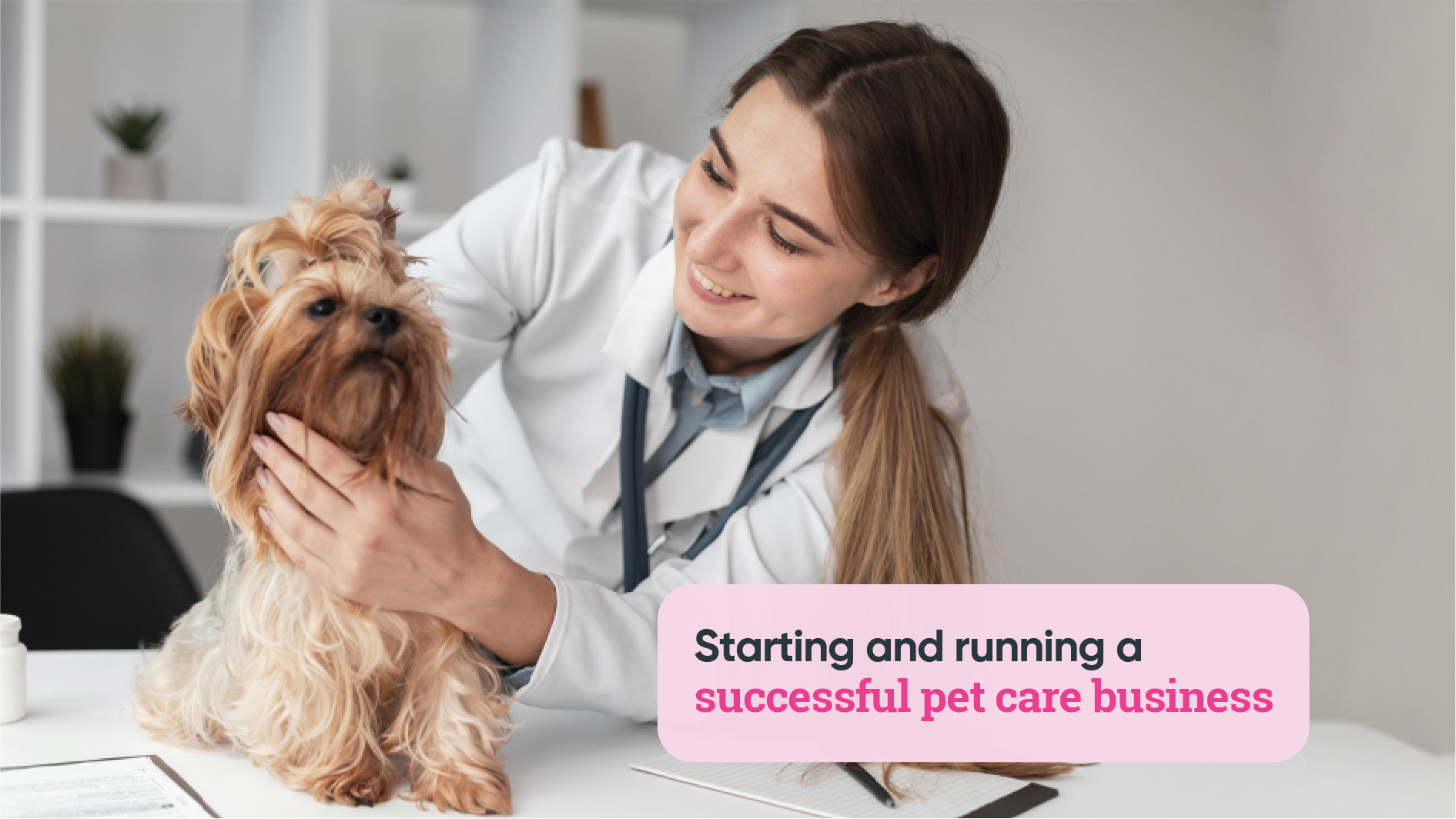 Careers Collectiv, pet care business, dog training, pet grooming, pet photography,